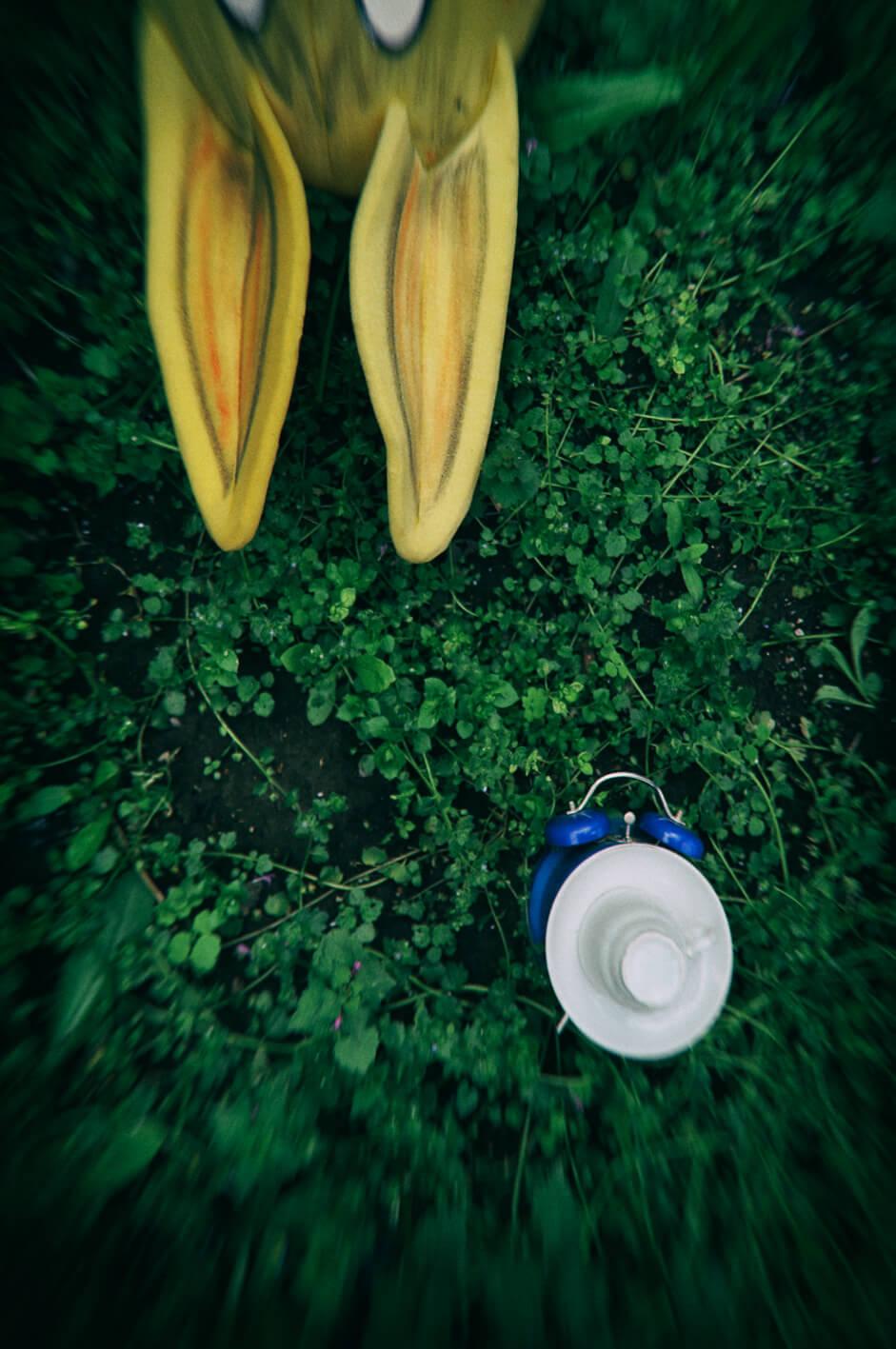 Alice in Wonderland-Photography-Milana Videnov